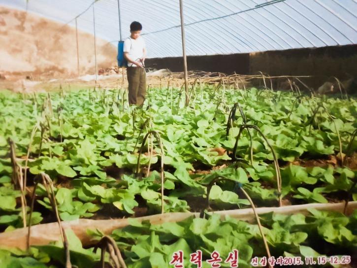 KakaoTalk_Photo_2020-04-08-12-17-39.jpg